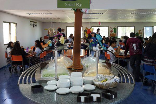 Salad Bar Colegios
